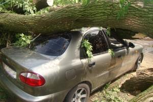 Автоюрист недорого, возмещение ущерба после дтп
