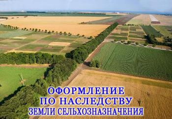 Оформление земли сельхозназначения по наследству